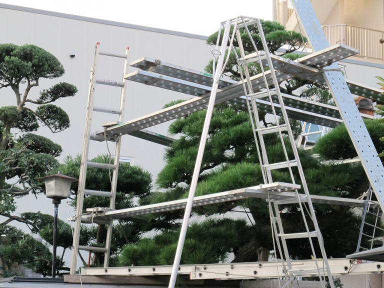 大規模庭園造りも手がける 友樹造園